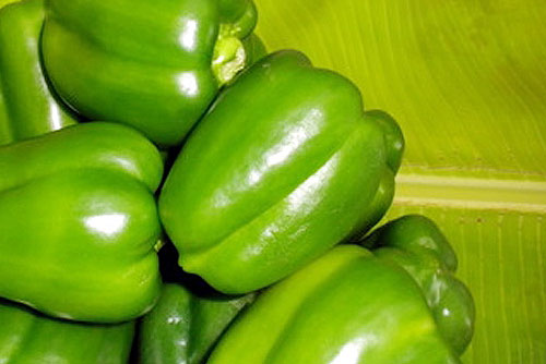 Control your diabetes and obesity with capsicum