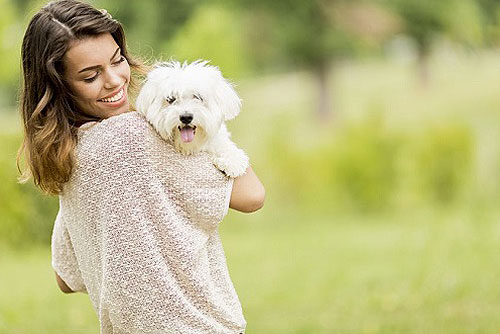 Things Pets Teach You about a Happier, Healthier Life