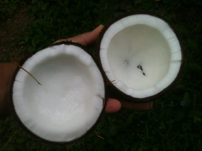 Coconut oil health benefits mayo clinic