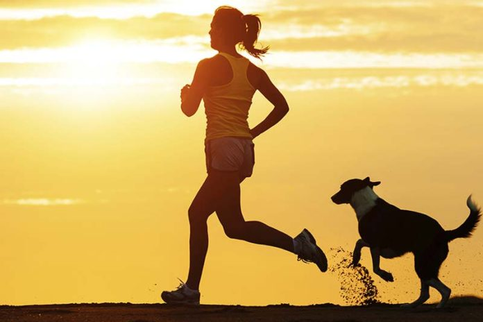 Let your pets be a part of your workouts