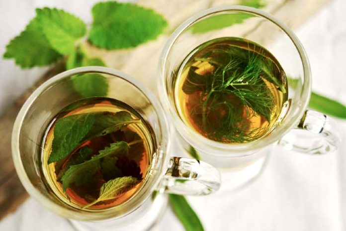 5 Types of Tea for a good health, is herbal tea good for you, different types of tea and their benefits, which tea is best for you, benefits of tea with milk, benefits of drinking black tea, benefits of lipton tea, tea benefits chart,