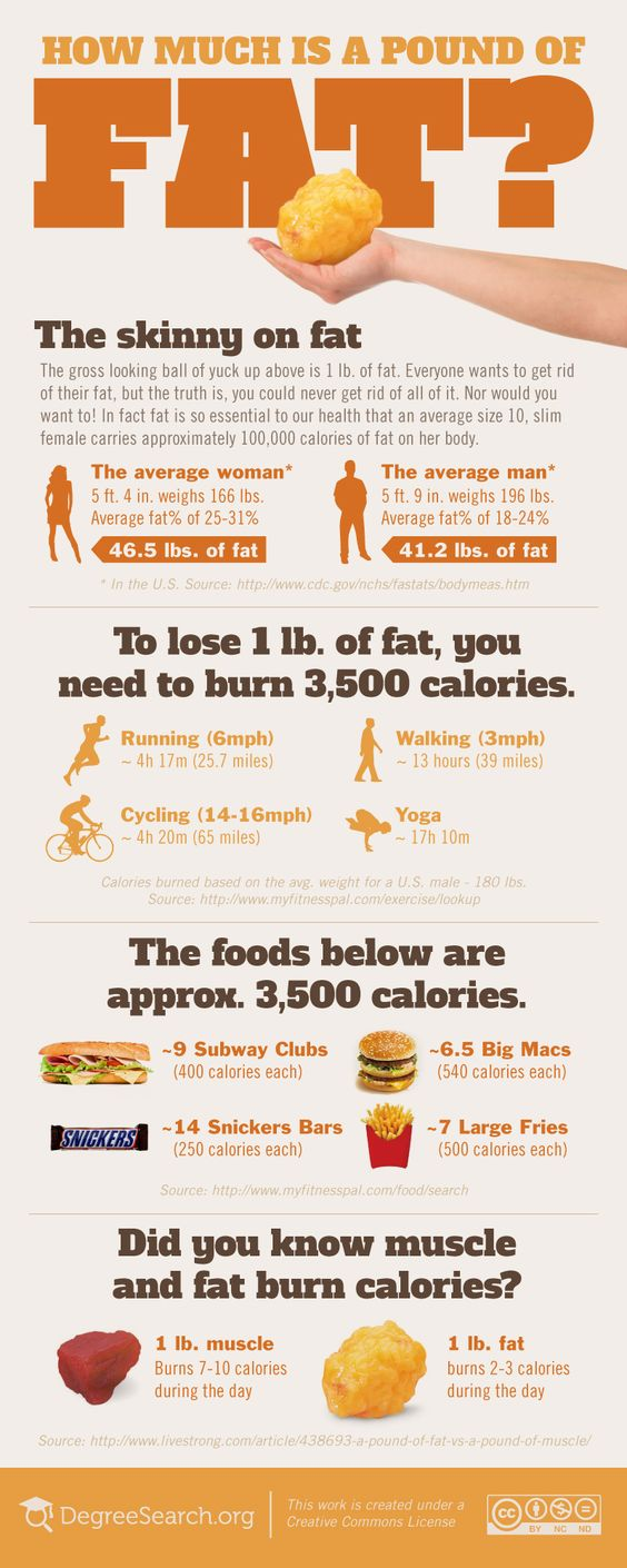 7 Interesting Facts About Fat