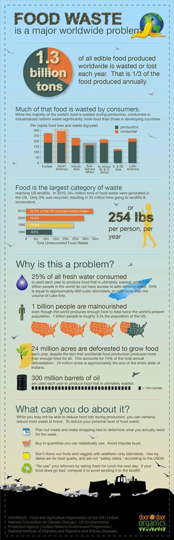 Avoid Food Wastage - Use a Food Vacuum Sealer