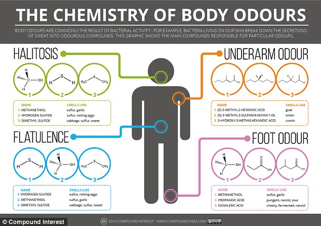 Chemistry of Body Odor
