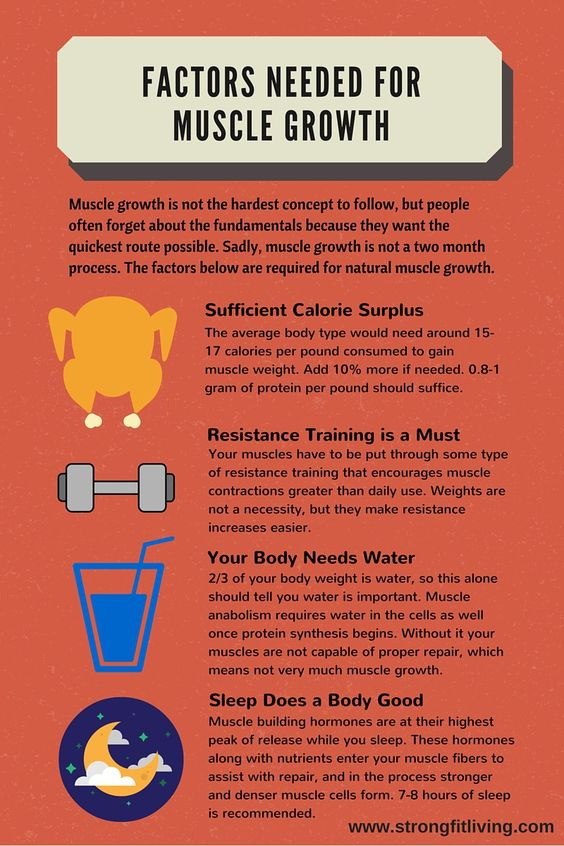 factors needed for muscle growth