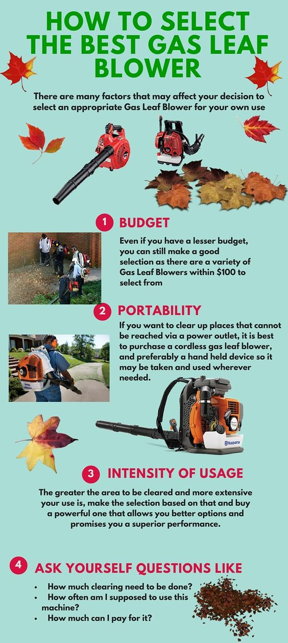 How to select the best gas leaf blower
