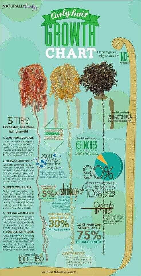 curly hair growth chart