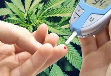 Is CBD Good For Treating Diabetes?