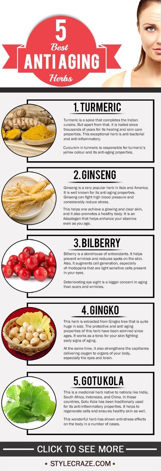 Best Anti Aging Herbs