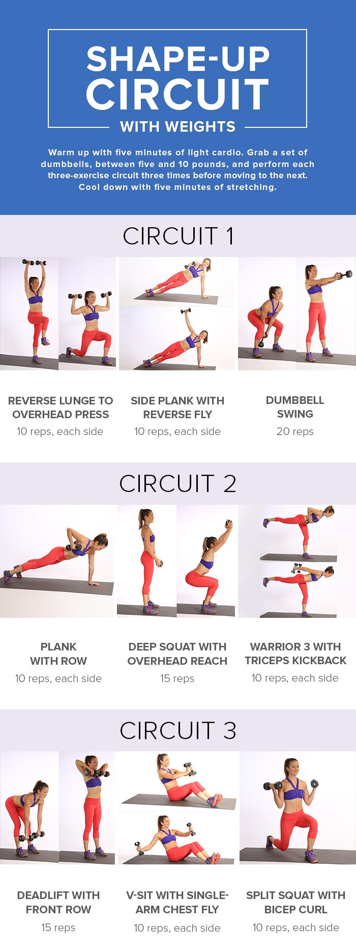 Shape-up Circuit with weights