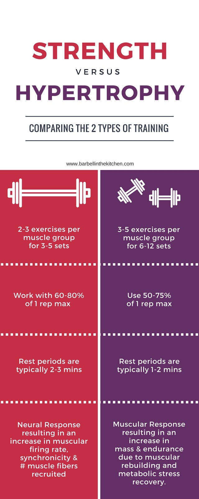 Strength vs hypertrophy