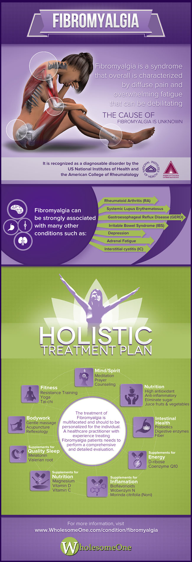 Fibromyalgia Holistic Treatment Plan