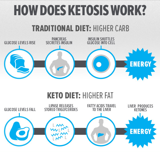 how does Ketosis works
