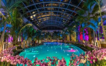 Visit Therme Bucuresti - The Biggest Wellness, Relaxation, And Entertainment Center In Europe