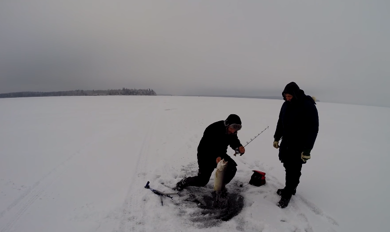 Cold Lake, Alberta Saskatchewan ice fishing