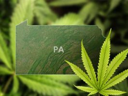 Industries on the Rise in Pennsylvania