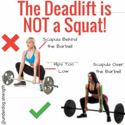 Deadlift is not a Squat