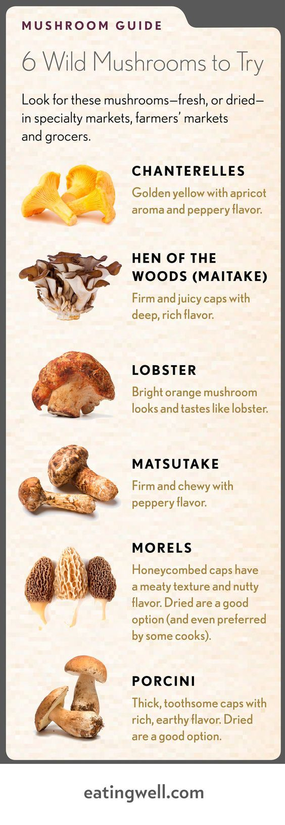 Mushrooms to eat