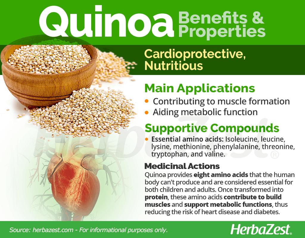 Quinoa Benefits and Properties