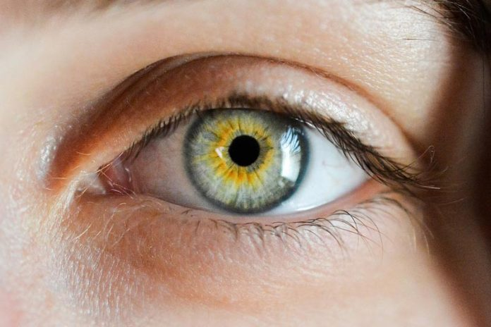 The 5 Secrets to Better Eyesight