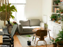 The Allergy Assassin: How to Reclaim the Air Quality of Your Home