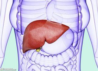 Viral Hepatitis Disease