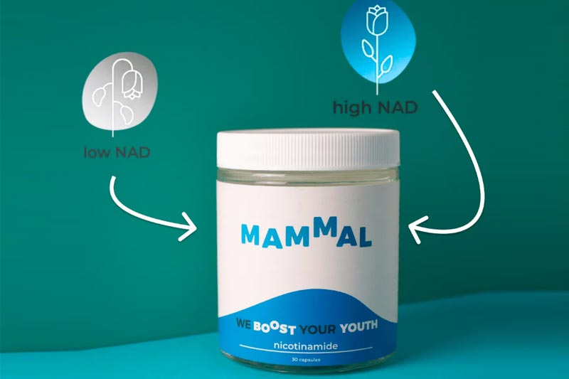 Mammal Boost Your Youth