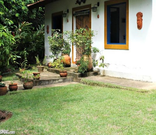 Top Tips For Keeping Your Lawn Looking Beautiful All Year Round