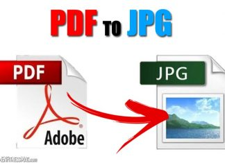 PDF to JPG: Fastest Way to Convert Using GogoPDF Online PDF Converter