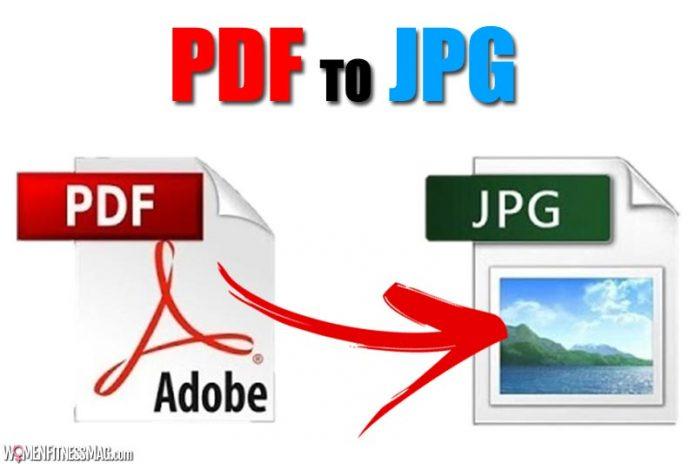 PDF to JPG: Fastest Way to Convert Using GogoPDF Online PDF Converter