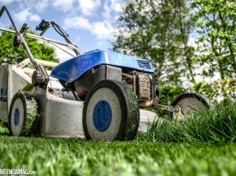 Yard Cleaning: 5 Hacks to Make It Quick and Easy
