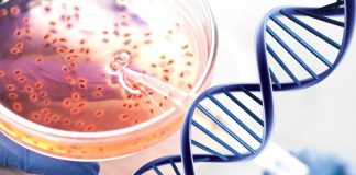 DNA Testing and 5 Ways How it Helps Women Live Healthier